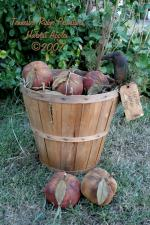 Primitive Grungy Fall Harvest Apples Pattern