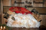 Primitive Grungy Christmas Santa Sheep Doll Pattern