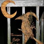 Primitive Grungy Witch Crow & Moon Door Hanger Set E-pattern
